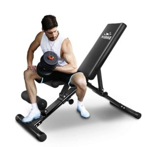 FLYBIRD Adjustable Bench with Leg Extension for Full Body